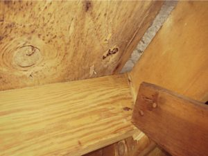 Mold and odor removal from lumber in Roanoke, VA