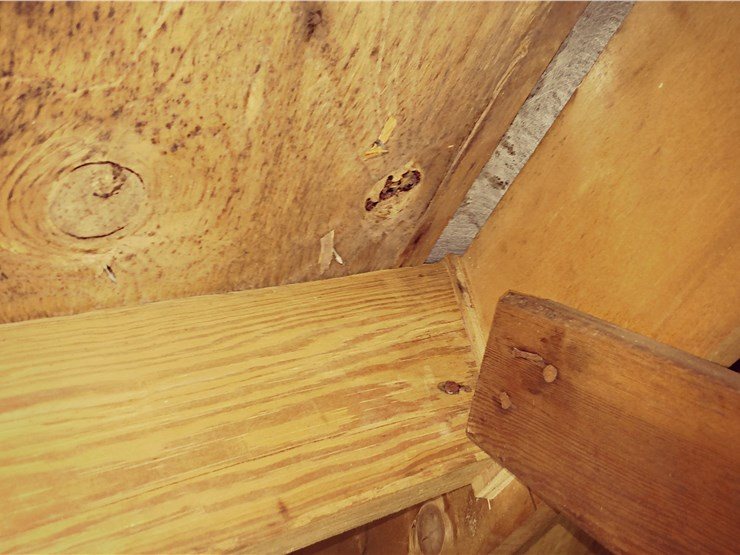 Mold and odor removal from lumber in Gaithersburg