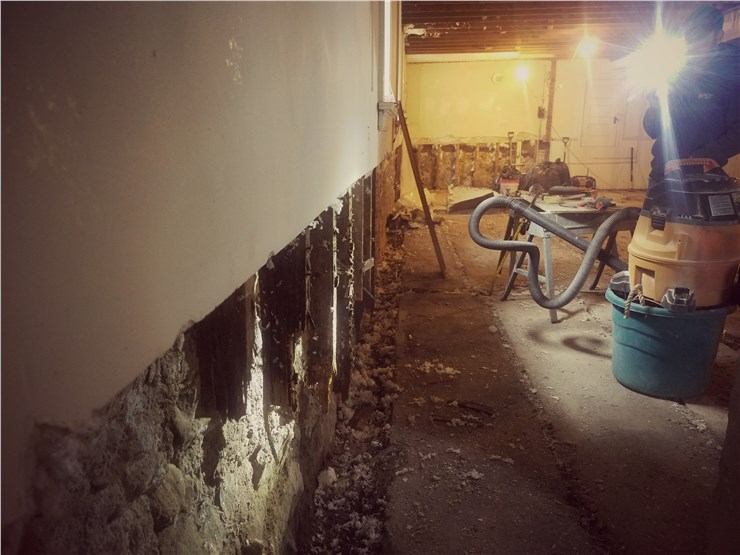 basement drywall damage from mold in brewster
