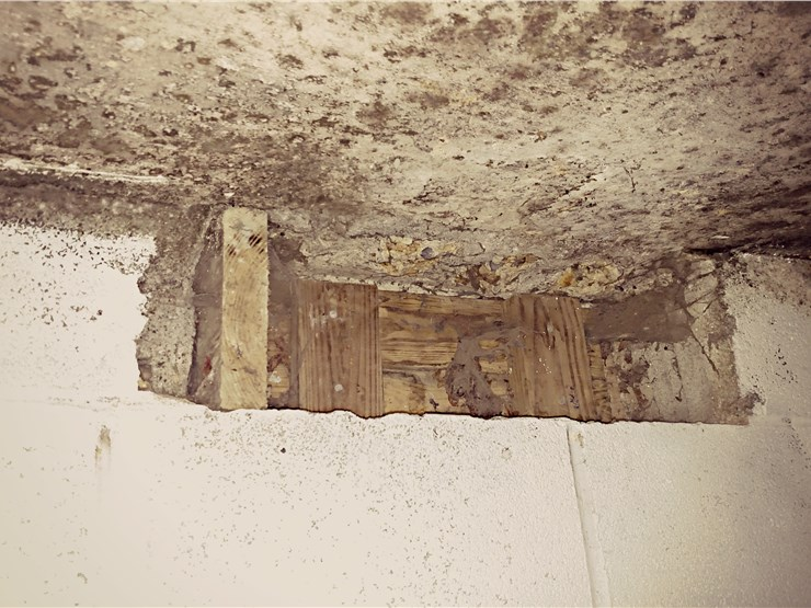 mold on wall in belfast me