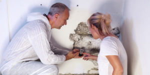 green home solutions is doing mold testing in Baltimore