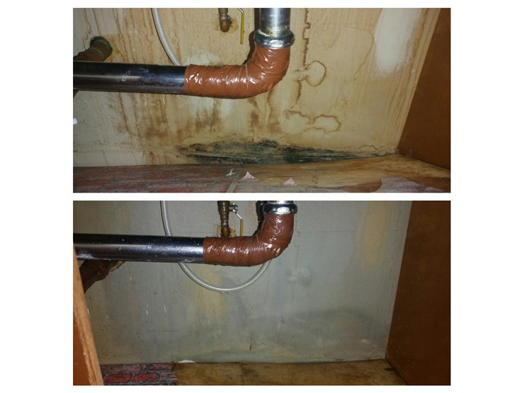 home plumbing mold removal in danbury