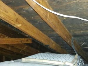 mold inspection in milford ma