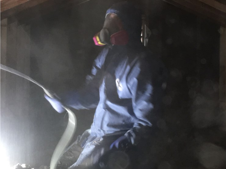 mold odor removal in milford ma