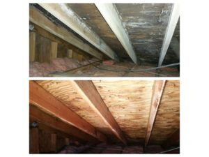 before and after pictures of mold removal in danbury
