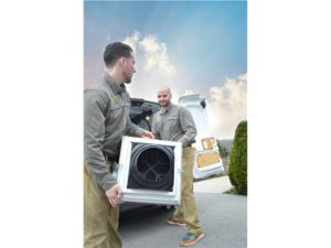 mold removal equipment in ossining