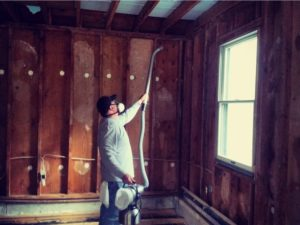 wood mold removal in Baltimore