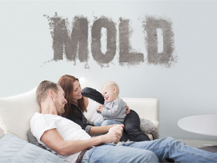 mold home inspection in redondo beach