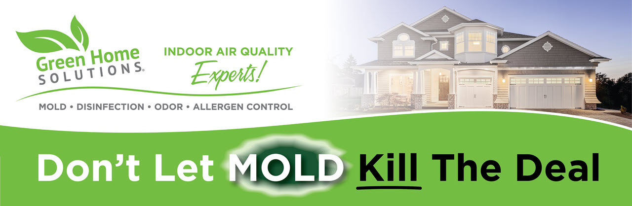 Green Home Solutions Mold Removal Disinfection Odor Control