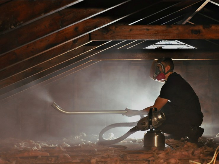professional performing attic mold removal in Carmel